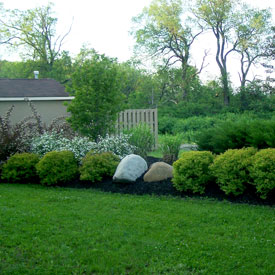 Planting featuring boulders.